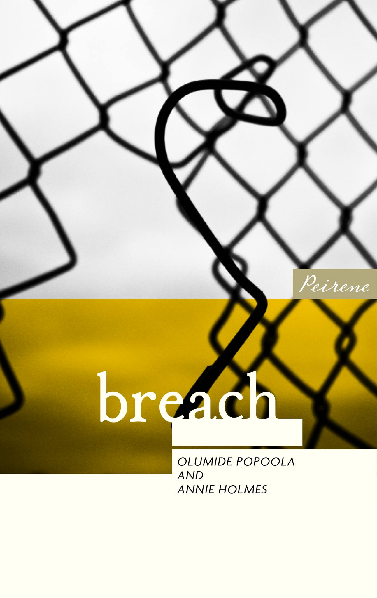 Breach by Annie Holmes and Olumide Popoola